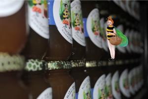 Miel de montagne, miel de Savoie, apiculteur Novalaise avant Pays Savoyard
